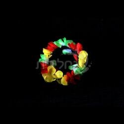 קשת הוואי צבעונית