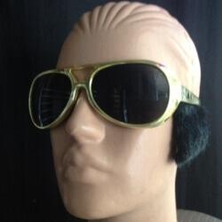 משקפי אלוויס