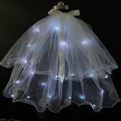 flashing veil2