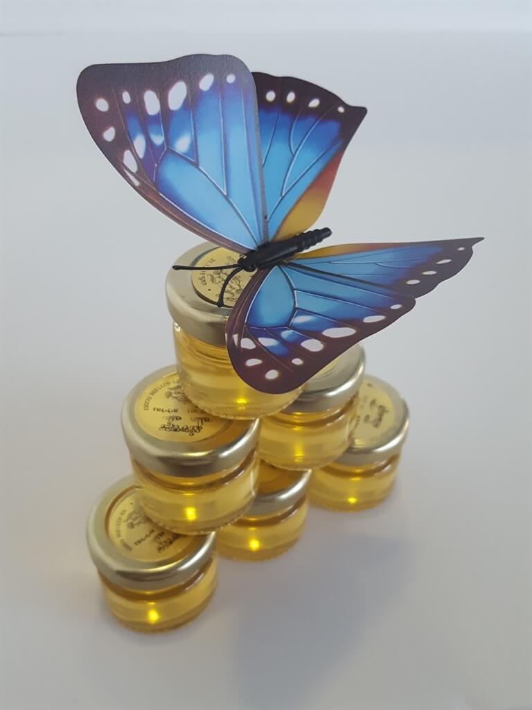 100 פרפרי מגנט