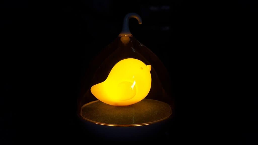 מנורת אפרוח