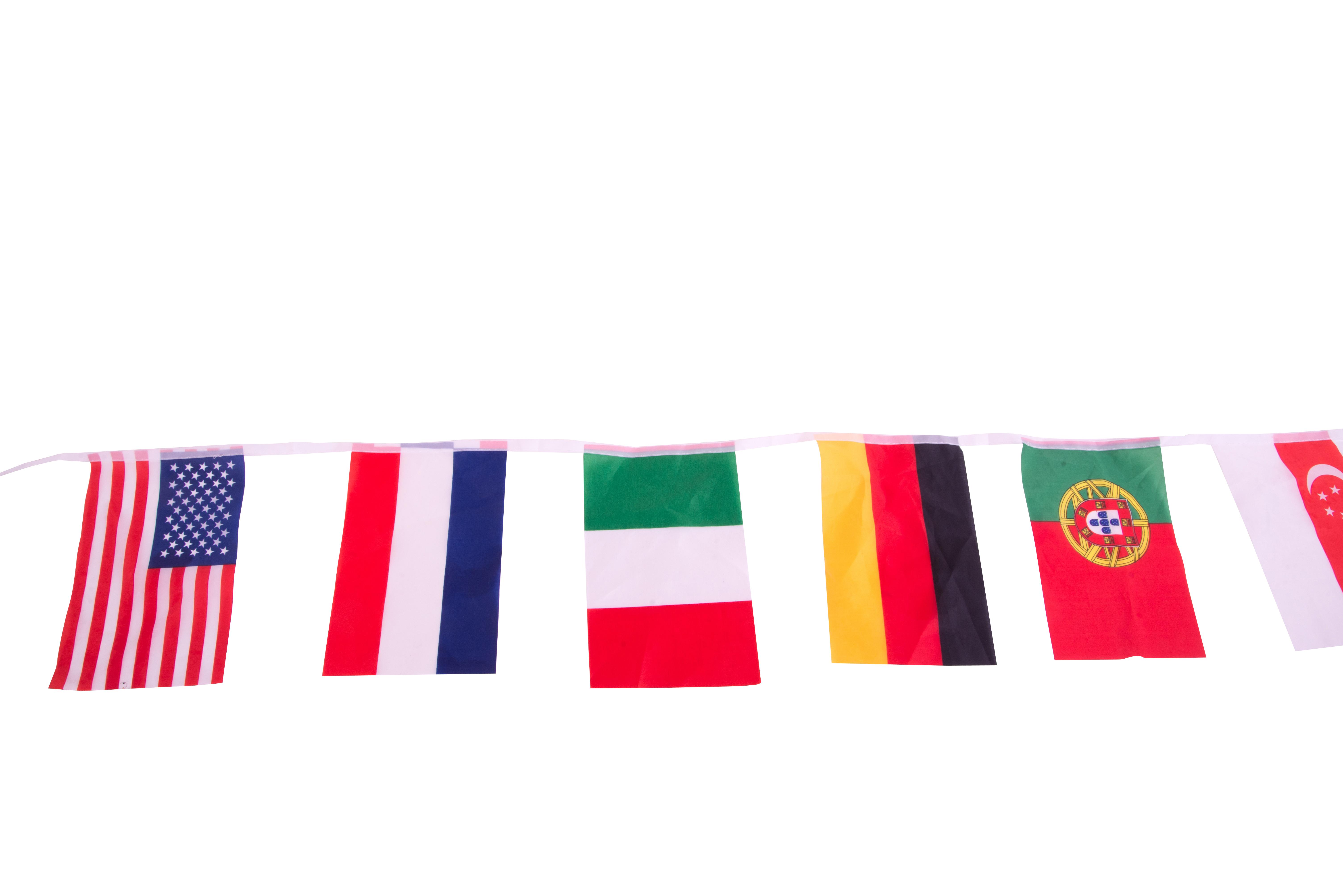 דגלי אירווזיון 10 מטרים
